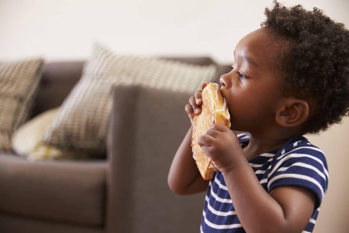 toddler-boy-eating-sandwich-1200x800.jpg